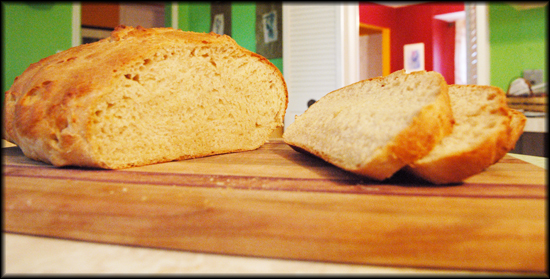 Basic Beer Bread In A Bread Maker